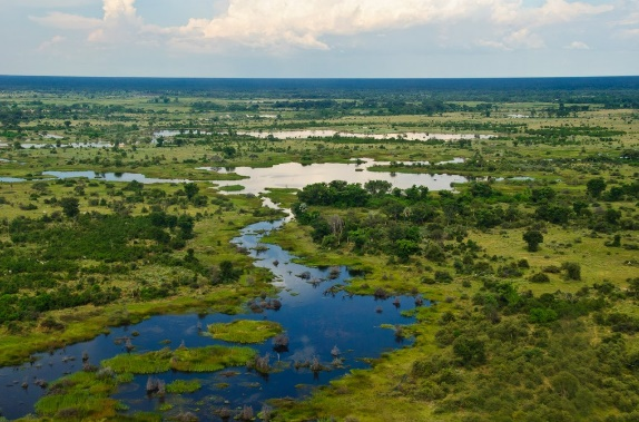 Water, Wildlife, and Communities