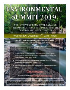 Environmental Summit Flyer