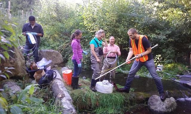 Field work sampling Thorton Creek