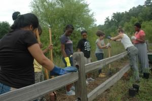 Volunteering at Sandy Creek Park (16 July 2014)