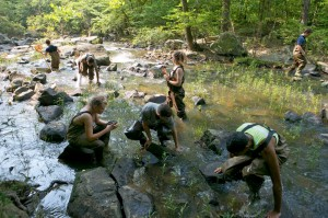 Dr. Nicolette Cagle (center standing) and ESSP students in New Hope Creek