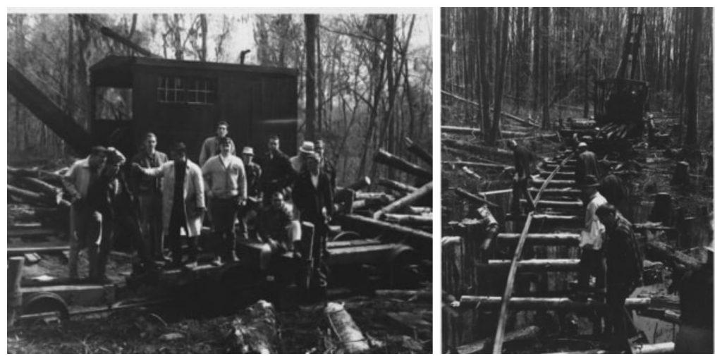 Duke Forestry 1966