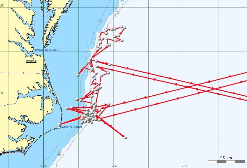 Unfiltered Argos Location Data From A Cuvier S Beaked Whale Tagged Off Cape Hatteras May 13 2014 Data Provided Courtesy Of Cascadia Research Collective