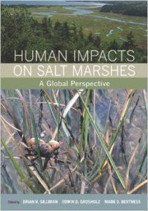 Human Impacts on salt marshes