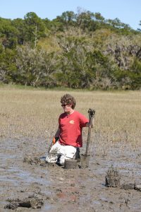 Research on Sapelo Island, GA