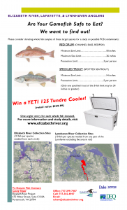 Gamefish Flyer