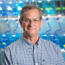Image of Dr. Di Giulio