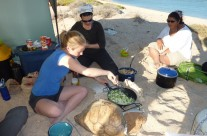 Beach cooking